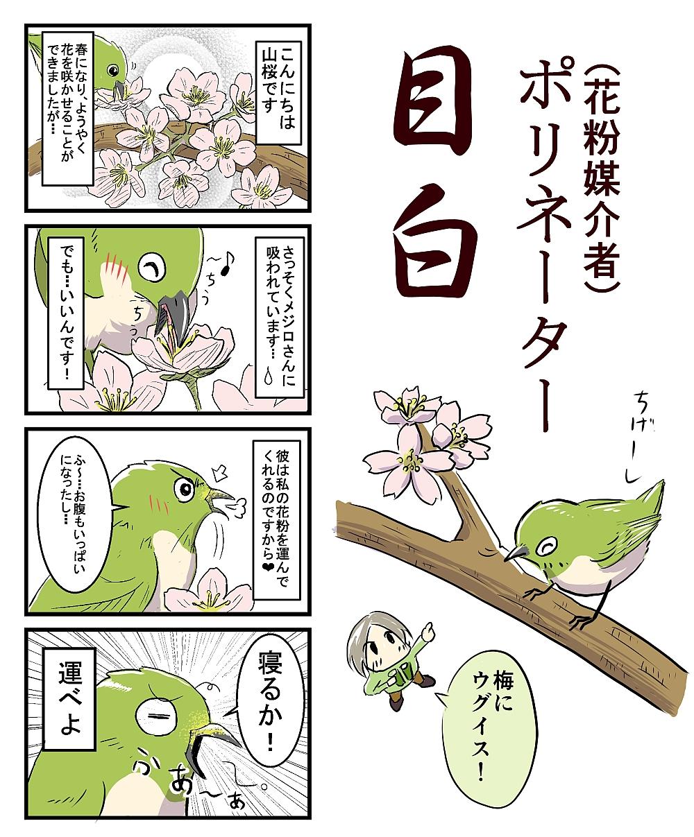 ヤン探_4コマ_3月号(カラー)