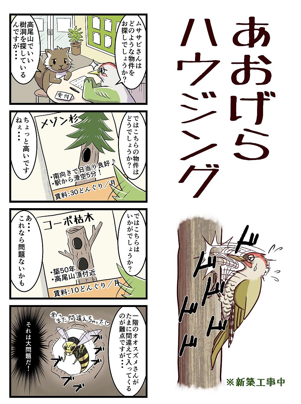 ヤン探_4コマ_5月号カラー